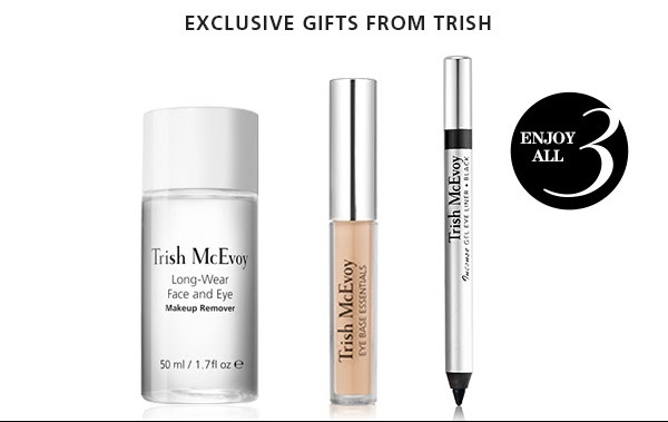 trish mcevoy bronzer brush