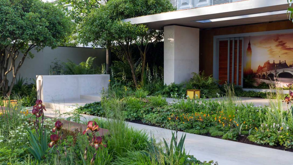Irish Designer Wins Gold at Chelsea Flower Show