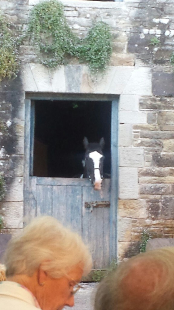 Lismore Castle Stable