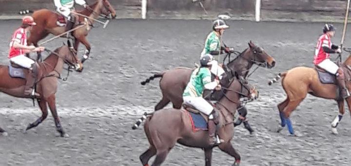 weekend activities at polo wicklow – ireland vs. ecuador