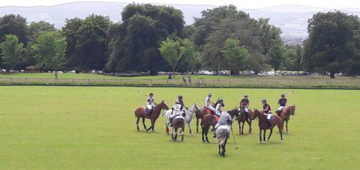 weekend polo @ phoenix park – lhk vs. pegasus