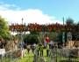 The Big Grill Fest – Herbert Park