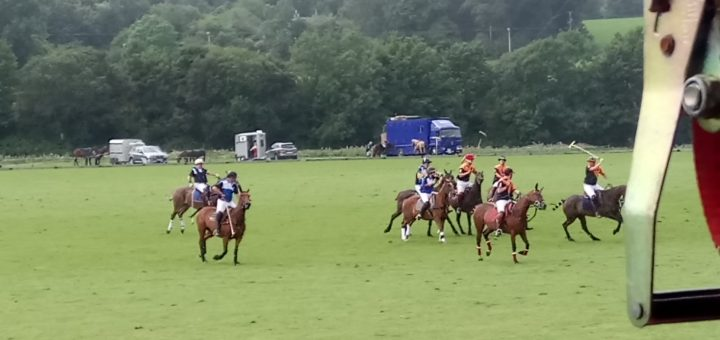 polo action at bunclody, wexford