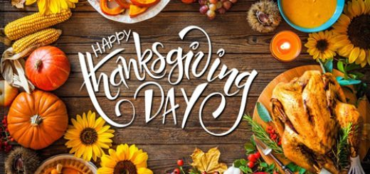 happy thanksgiving from all at pynck!