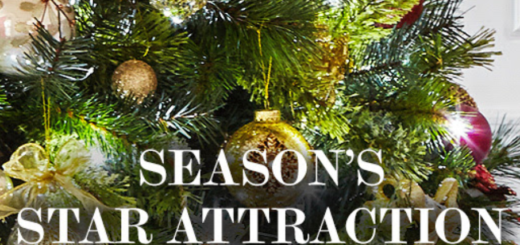 dunnes stores – the season's star attraction