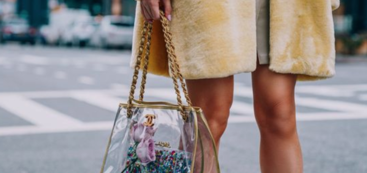 transparent bags and how to wear them