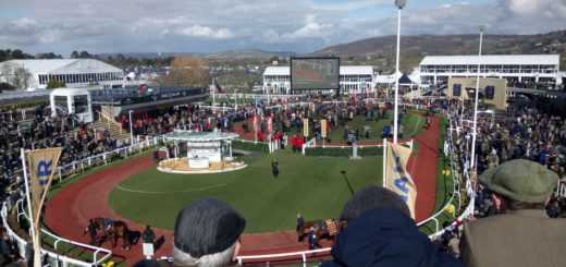 the ring at cheltenham 2018 st. patrick's day