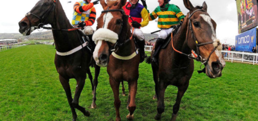 cheltenham racecourse – tickets and packages on sale now!