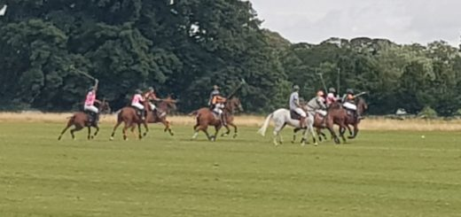 polo final @ the phoenix park – 12th august 2018