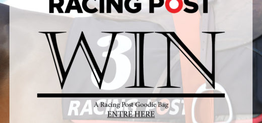 Leopardstown Marketing - WIN an exclusive Racing Post Goodie Bag and tickets to the Leopardstown Christmas Festival