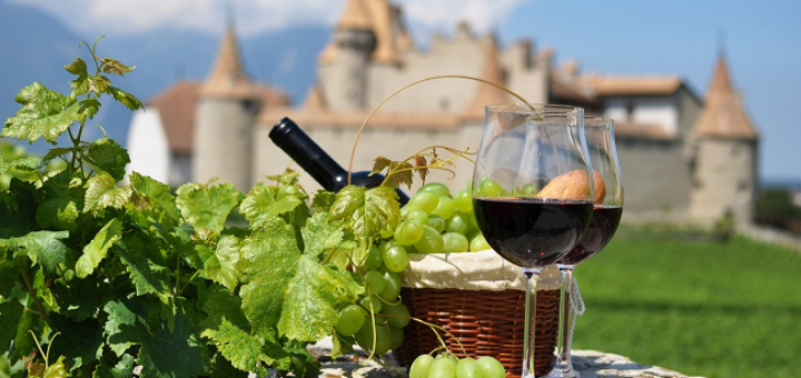 invitation to attend french wines discoveries