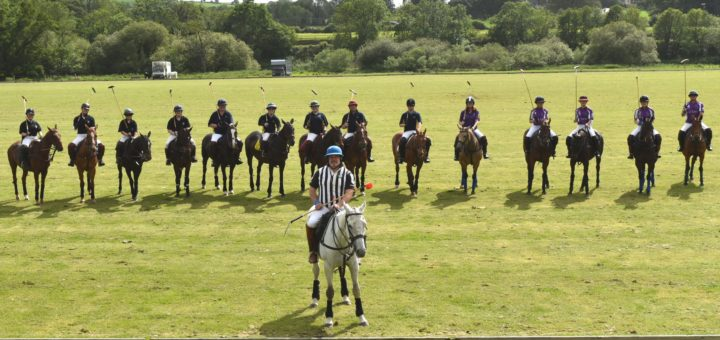 polo in the wexford countryside – a beginners' dream game