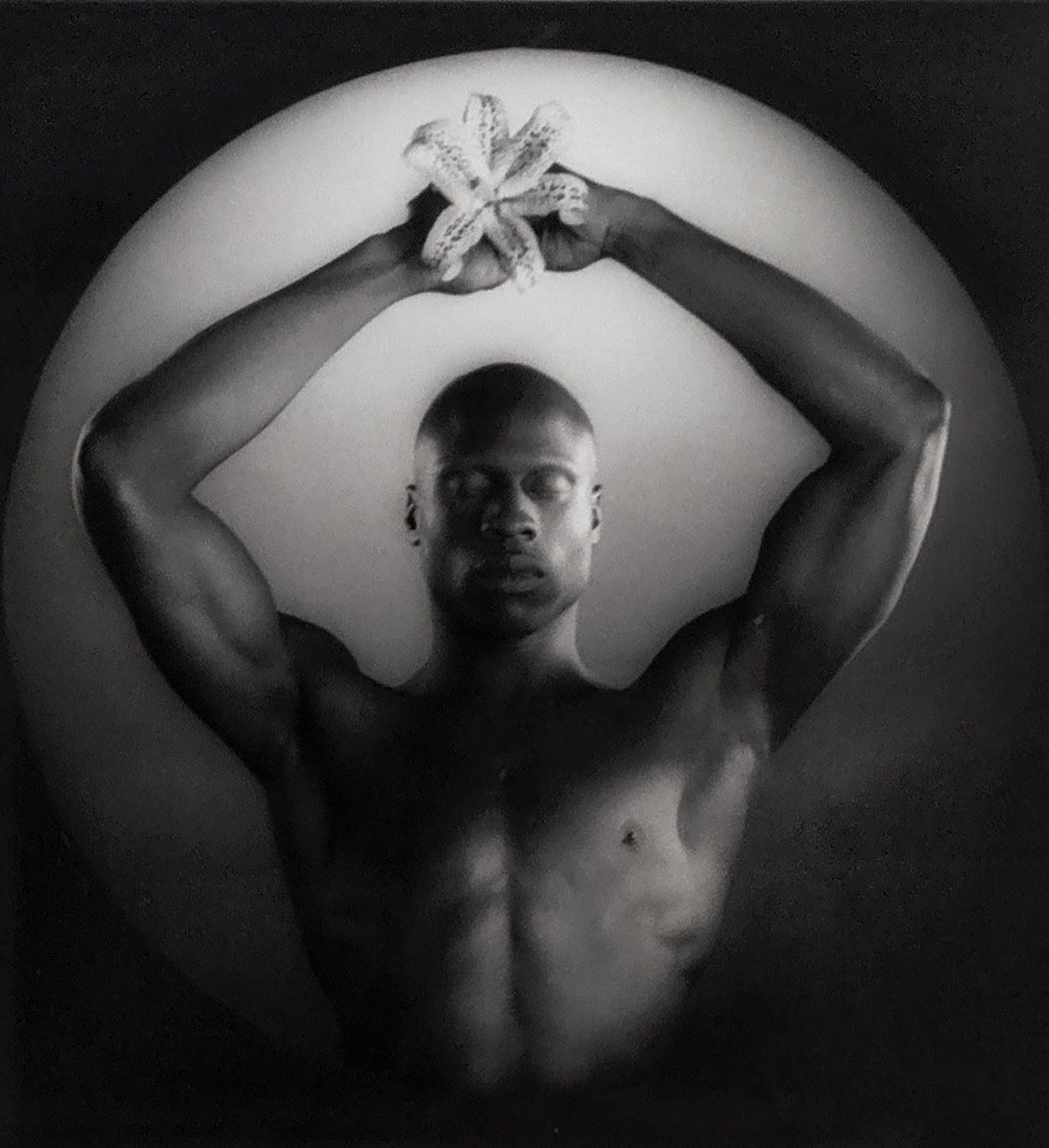 artnet Auctions - The photography Premier Sale is here!
