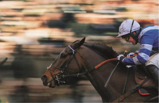 Cheltenham Racecourse - Experience Extraordinary