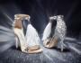 Jimmy Choo – Last-Minute Luxury Gifting