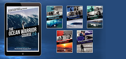 Magicseaweed - The Ocean Warrior Course 2.0 - 60% OFF SALE ENDS IN 24HRS