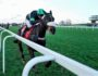 "First Flow's ""extraordinary ride"" wins Clarence House Chase"