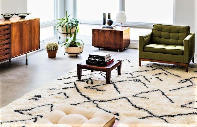 beber rug in room home decor cropped.jpg