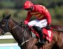 Raider's revenge at Punchestown Festival Gold Cup