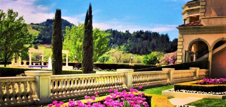 Ferrari Carano Winery CA flowers cropped.jpg